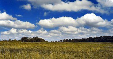 Mơ thấy đám mây có ý nghĩa gì?
