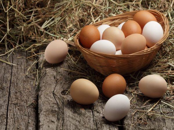 Mơ thấy trứng - Chiêm bao thấy trứng đánh số mấy?